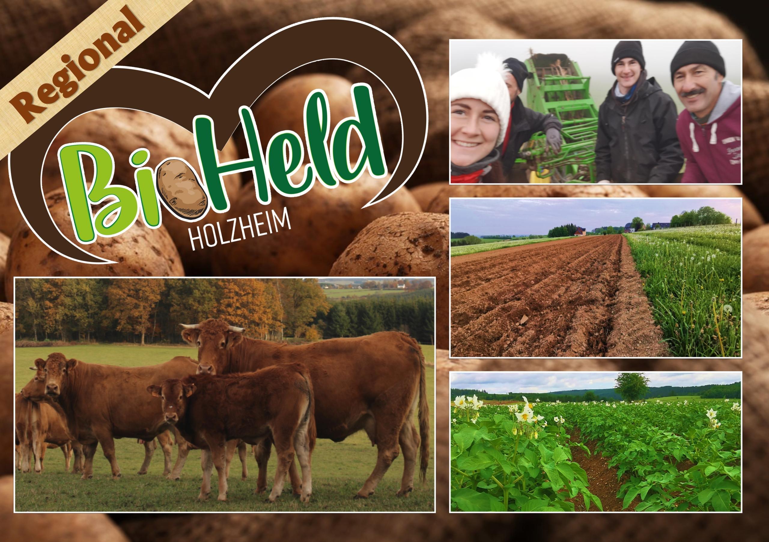 Logo BioHeld Holzheim