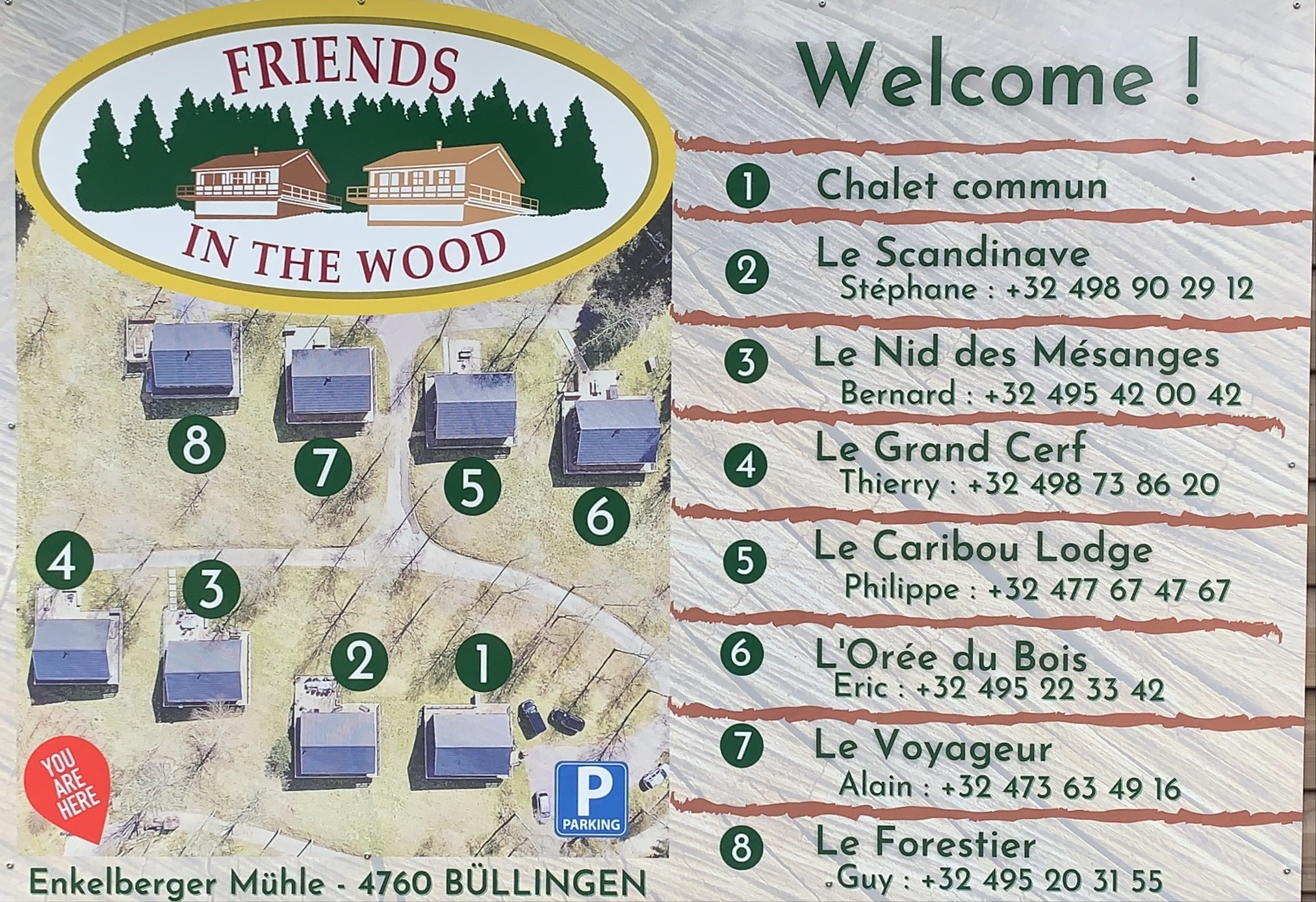 """Logo Chalets """"Friends in the wood"""""""