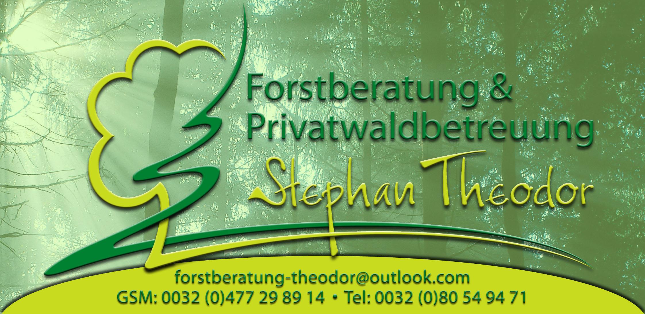 Logo Forstberatung & Privatwaldbetreuung Stephan Theodor